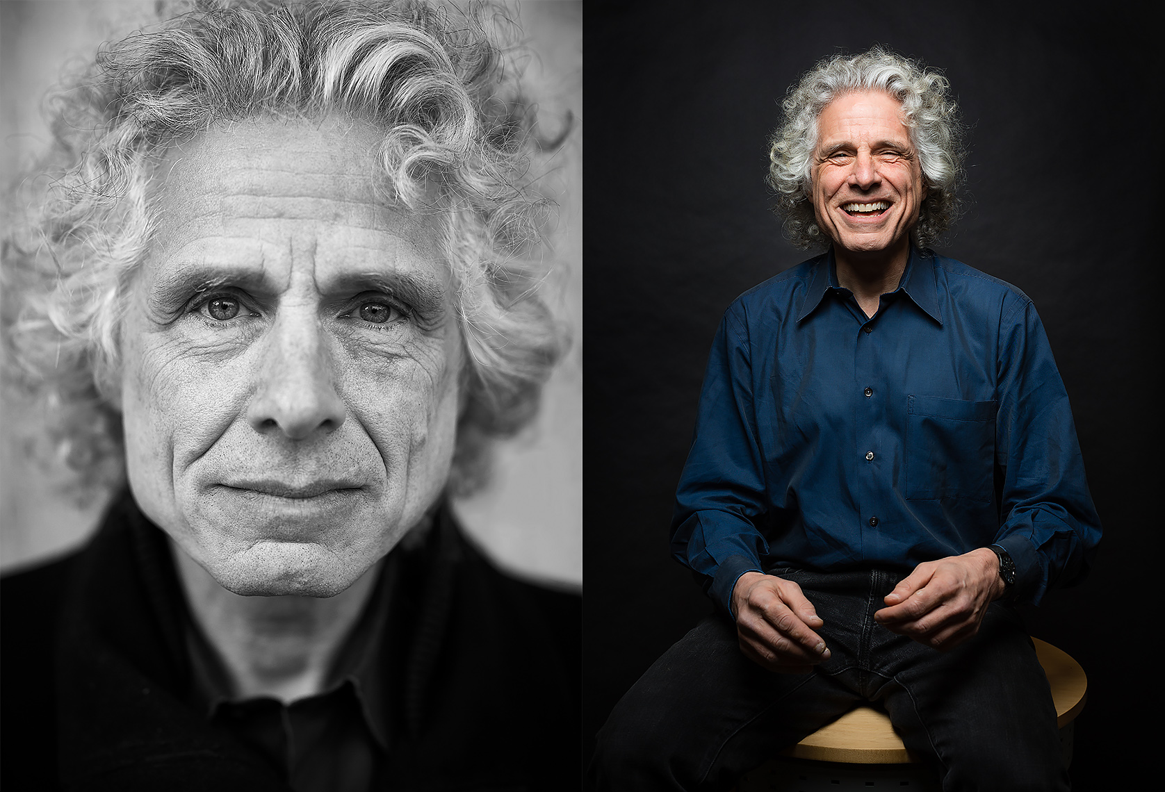 HARVARD PSYCHOLOGY PROFESSOR, STEVEN PINKER.